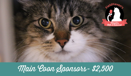 sponsors-main-coon_1200x700