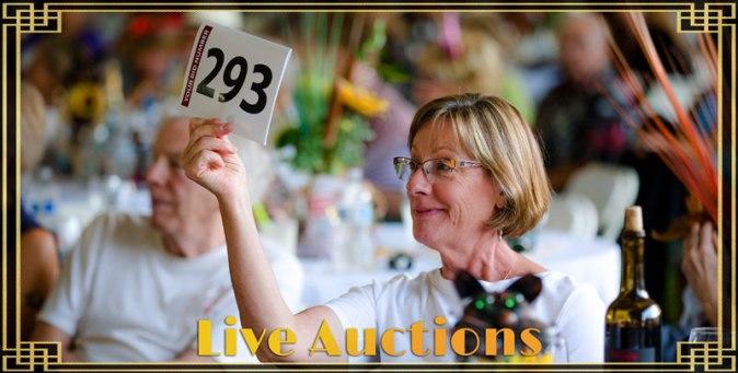 live-auctions_800x405